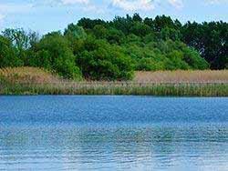 Lac de Tisza